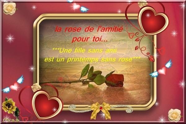 la rose de l'amitié offert par notre amie MISS
