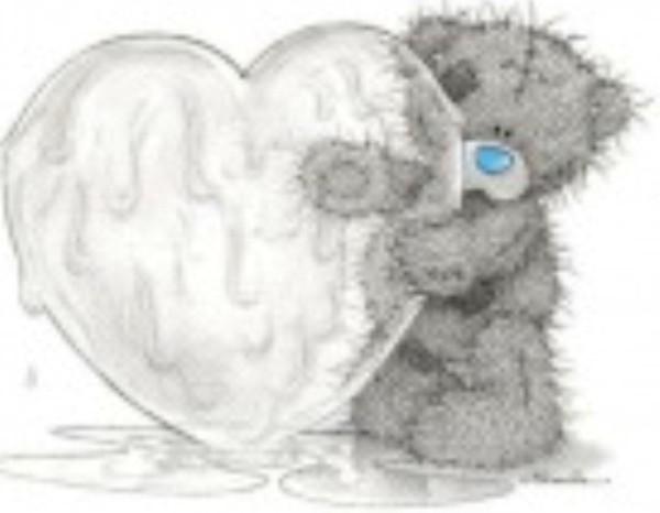 ours et son gros coeur