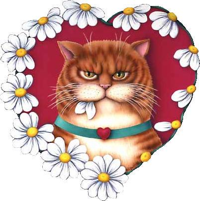 un chat original dans un coeur de marguerite