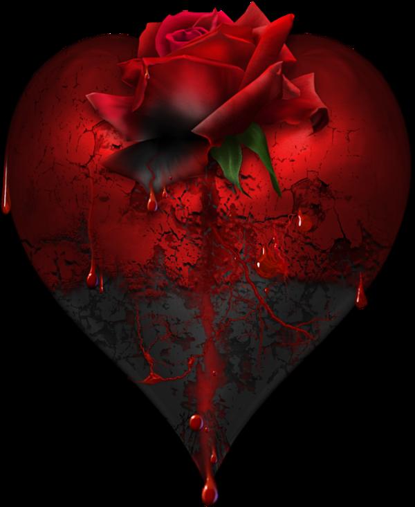 Grand Coeur Et Rose Rouge Image Fleur Rouge Coeur