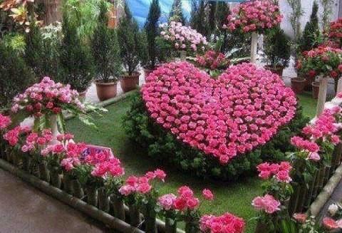 """Résultat de recherche d'images pour """"Coeur fleur"""""""