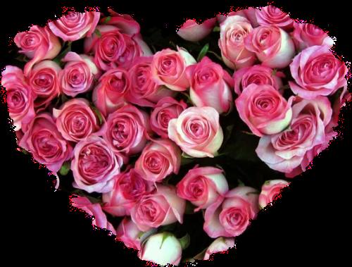 Coeur Et Fleur